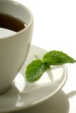 Mint Tea. White cup of tea with a mint leaf stock photo