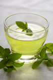 mint tea Royaltyfria Bilder