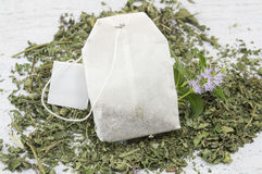 Mint tea bag and fresh mint plant Royalty Free Stock Image