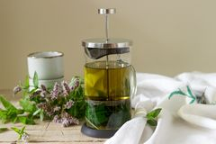Mint tea in a clear glass teapot, mint leaves and tea cups. Selective focus stock image