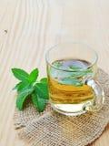 Mint tea Stock Images