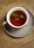 Mint with tea Stock Photography