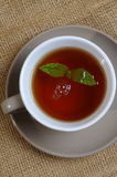 Mint with tea Royalty Free Stock Photo