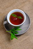 Mint with tea Royalty Free Stock Images