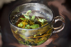 Mint tea cup taken closeup. Stock Images