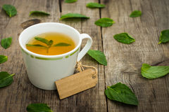 Mint Tea royalty free stock images