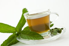Mint tea with fresh mint leaf around Royalty Free Stock Image