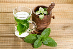 Mint tea with fresh mint leaves Royalty Free Stock Photography