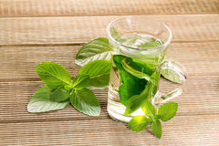 Mint tea with fresh mint leaves Stock Photos