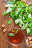 Mint tea. In glass cup royalty free stock photos