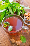 Mint tea. In glass cup stock image