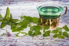 Mint tea, globules, medicinal herbs Royalty Free Stock Photos