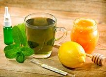 Mint tea - healthy drink Royalty Free Stock Photos