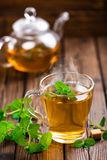 Mint tea. Hot mint herbal tea in glass cup royalty free stock images