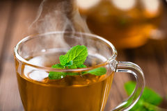 Mint tea. Hot mint herbal tea in glass cup stock image