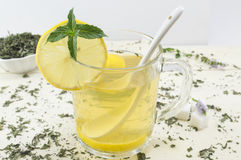 Mint tea with lemon and a fresh mint. Plant on the table Stock Photography
