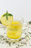 Mint tea with lemon and a fresh mint Stock Image