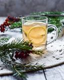mint tea with lemon in a glass cup decor of fir, rowan and a soft scarf Royalty Free Stock Image
