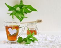 Mint tea with mint leaves and honey Stock Images