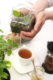 Mint tea, natural infusion of herbs. Royalty Free Stock Photos
