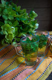 Mint tea and spring flowers Royalty Free Stock Photo