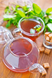 Mint tea. On a table stock photography