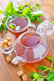 Mint tea. On a table royalty free stock images