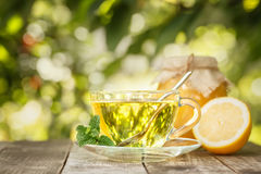 Mint tea on table Royalty Free Stock Photography
