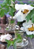 Mint tea. Royalty Free Stock Photo
