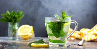 Free Mint Tea With Fresh Mint Leaves In Glass Cup, Alternative Medicine Concept, Healthy Hot Drink Stock Photo - 181634970