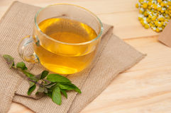Mint tea. On wooden background stock images