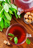 Mint tea. On the wooden table, fresh tea royalty free stock images
