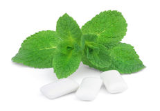 Mint and three pads of chewing gum Stock Photography
