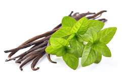 Mint with vanilla Stock Images