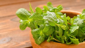 Mint in vintage clay bowl stock footage