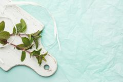Mint on a white kitchen board Royalty Free Stock Photo