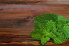 Mint  on wooden background Royalty Free Stock Photos