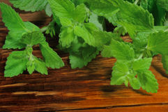 Mint  on wooden background Royalty Free Stock Images