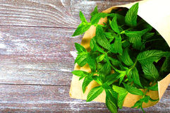 Mint on a wooden background. Mint in a paper bag on a wooden background Royalty Free Stock Photography