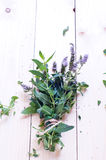 Mint on a wooden board Royalty Free Stock Images