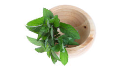 Mint in a wooden pounder Stock Photo