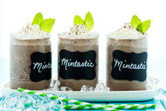 Mintastic cold drink Stock Images