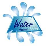 minten för is för flaskexponeringsglas vaggar den mineraliska vatten Royaltyfri Foto