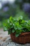 Mintkaramell i liten korg på naturlig träbakgrund, pepparmint, Royaltyfria Bilder