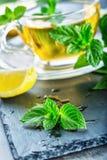Mintkaramellblad Mint leaves Te mint tea tea för glass växt- för horsetail för fokus för arvensekoppequisetum selektiv naturmedic Royaltyfria Foton