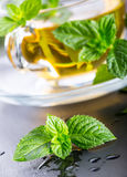 Mintkaramellblad Mint leaves Te mint tea tea för glass växt- för horsetail för fokus för arvensekoppequisetum selektiv naturmedic Arkivfoto