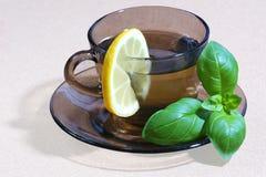 Minttea med citronen Arkivfoton