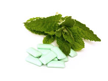 Minty chewing gum. On a white background Stock Image
