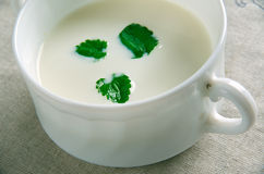 Minty Garlicky Yogurt Sauce. Kyrgyzstan. middle Asia Stock Images