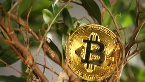 Minująca moneta na kwiacie Robić Jako Cyfrowej waluta Bitcoin